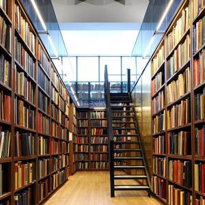 Библиотеки Палкино